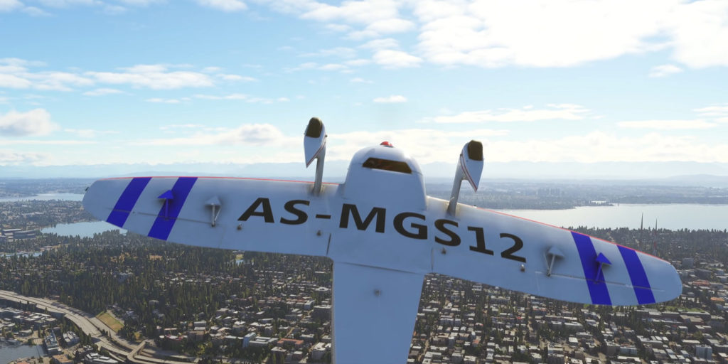 Microsoft Flight Simulator 2020 – CAP 10