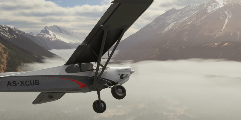 Microsoft Flight Simulator 2020 – Xcub